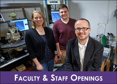Faculty & Staff Openings