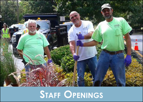 Staff Openings